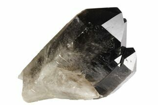 "Buy 4.9"" Dark Smoky Quartz Crystal - Brazil - #120769"