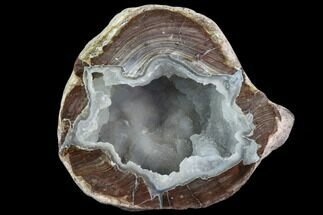 "Buy 3.2"" Crystal Filled Dugway Geode (Polished Half) - #121666"