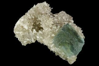 Fluorite & Quartz - Fossils For Sale - #122001
