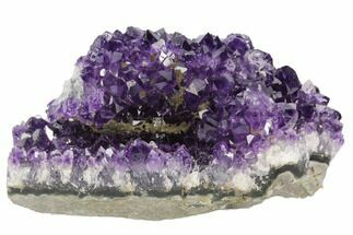 "3.6"" Dark Purple, Amethyst Crystal Cluster - Uruguay For Sale, #122108"