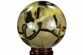 "3.15"" Polished Septarian Sphere - Madagascar For Sale, #122927"