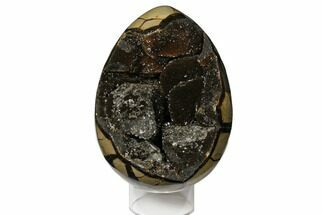 "Buy Gorgeous, 7.9"" Septarian ""Dragon Egg"" Geode - Crystal Filled - #124531"