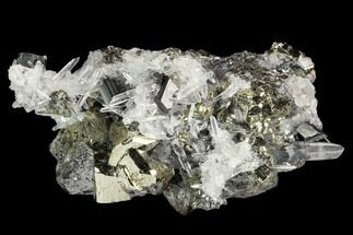 Pyrite, Huebnerite & Quartz - Fossils For Sale - #124410