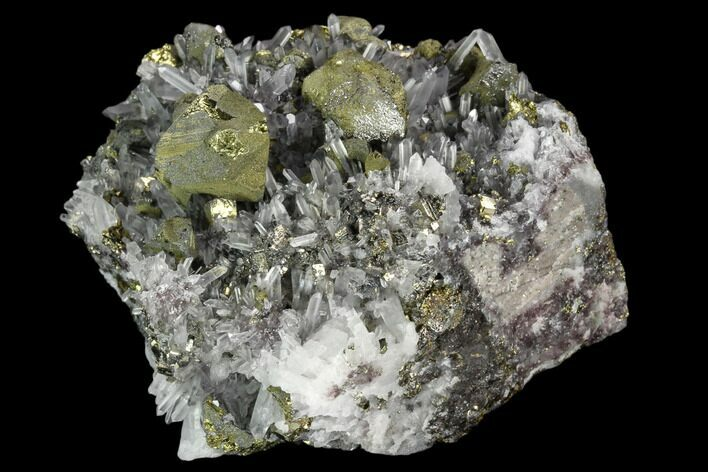 "2.3"" Quartz and Chalcopyrite Association - Peru"
