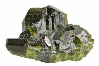 Diopside  - Fossils For Sale - #122643