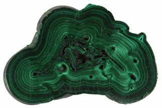 Malachite - Fossils For Sale - #125706