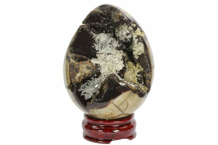 "4.4"" Septarian ""Dragon Egg"" Geode - Black Crystals"
