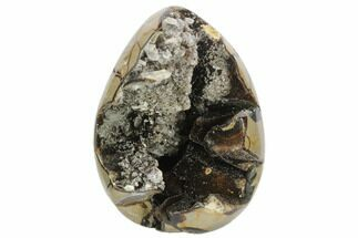 "Buy 6.4"" Septarian ""Dragon Egg"" Geode - Black Crystals - #123049"