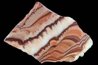 "Buy 2.15"" Polished Slab Of Rolling Hills Dolomite - Mexico - #126667"