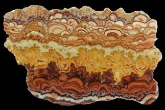 "Buy 6.3"" Polished Slab Of Rolling Hills Dolomite - Mexico - #126730"