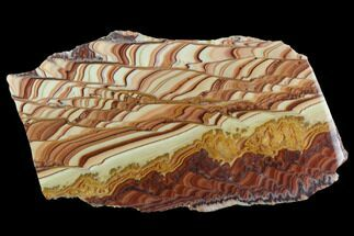 "7.5"" Polished Slab Of Rolling Hills Dolomite - Mexico For Sale, #126746"