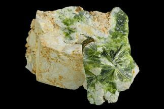 Wavellite - Fossils For Sale - #127140