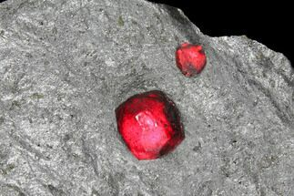 Buy Two Red Embers Garnets in Graphite - Massachusetts - #127768