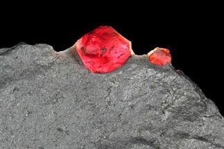 Two Red Embers Garnet in Graphite - Massachusetts For Sale, #127841
