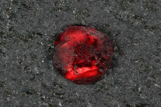 Red Embers Garnet in Graphite - Massachusetts For Sale, #127751