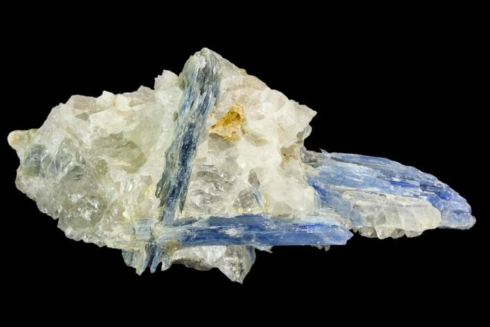 "4.3"" Vibrant Blue Kyanite Crystals In Quartz - Brazil"