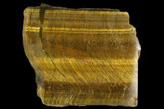 "4"" Polished Tiger's Eye Section - South Africa For Sale, #128534"