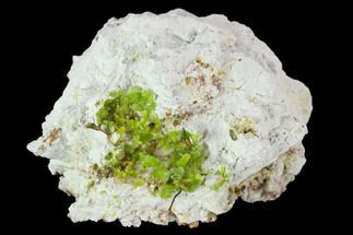 Pyromorphite - Fossils For Sale - #128577