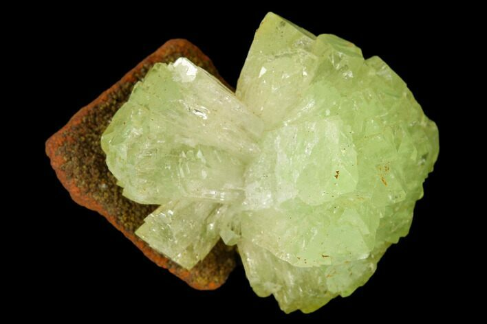 ".79"" Yellow-Green Adamite Crystal Cluster - Durango, Mexico"