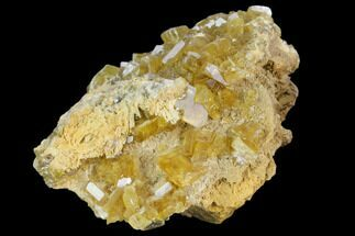 Barite - Fossils For Sale - #127023
