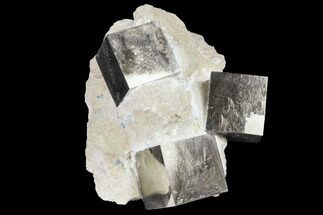 Pyrite - Fossils For Sale - #129105