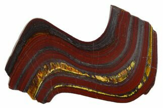 "4.5"" Polished Tiger Iron Stromatolite - 3.02 Billion Years For Sale, #129209"
