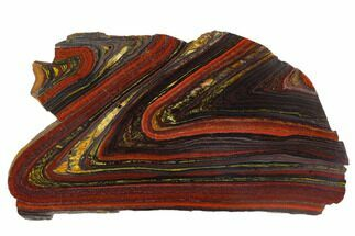 "6.3"" Polished Tiger Iron Stromatolite - 3.02 Billion Years For Sale, #129215"