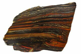 Tiger Iron Stromatolite - Fossils For Sale - #129216