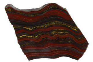 "6.6"" Polished Tiger Iron Stromatolite - 3.02 Billion Years For Sale, #129260"