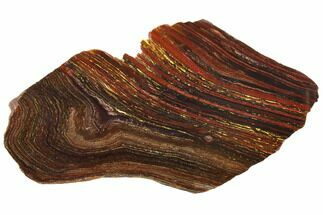 "Buy 14.5"" Polished Tiger Iron Stromatolite - 3.02 Billion Years - #129322"