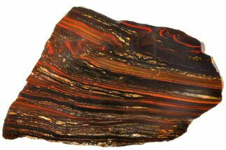 "Buy 6"" Polished Tiger Iron Stromatolite - 3.02 Billion Years - #129439"