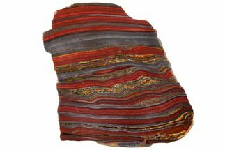 "Buy 5.5"" Polished Tiger Iron Stromatolite - 3.02 Billion Years - #129442"