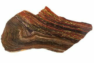 "Buy 14.2"" Polished Tiger Iron Stromatolite - 3.02 Billion Years - #129463"