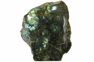"Buy 6.3"" Tall, Single Side Polished Labradorite - Madagascar - #126460"