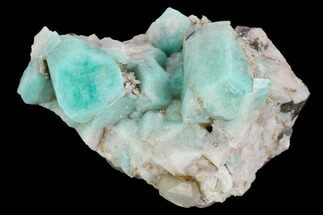 Microcline var. Amazonite & Quartz var. Smoky - Fossils For Sale - #129660