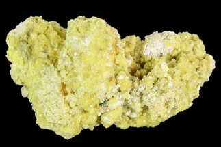 "3.2"" Sulfur Crystal Cluster on Matrix - Nevada For Sale, #129746"