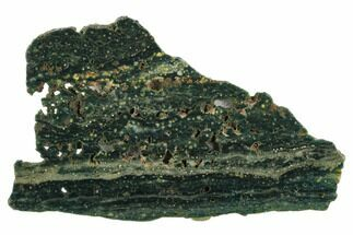 Ocean Jasper - Fossils For Sale - #129852
