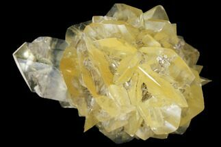 "2.7"" Twinned Selenite Crystals (Fluorescent) - Red River Floodway For Sale, #130286"