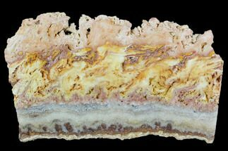 "6.7"" Colorful, Wild Fire Opal Slab (Not Polished) - Utah For Sale, #130589"