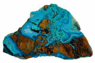 Chrysocolla & Malachite - Fossils For Sale - #130470