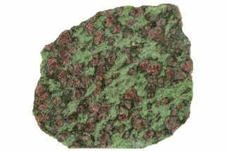 "3.7"" Pyrope, Forsterite, Diopside & Omphacite Slice - Norway For Sale, #131444"