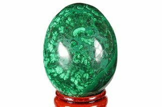"Buy 2"" Flowery, Polished Malachite Egg - Congo - #131875"