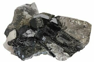 "1.7"" Black Tourmaline (Schorl) Crystal and Smoky Quartz - Namibia For Sale, #132179"