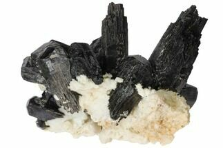 "2"" Black Tourmaline (Schorl) Crystals with Orthoclase - Namibia For Sale, #132197"