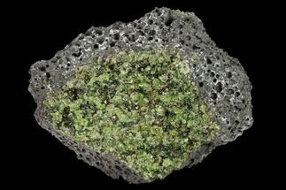 "Buy 3.7"" Peridot in Basalt - Arizona - #132289"