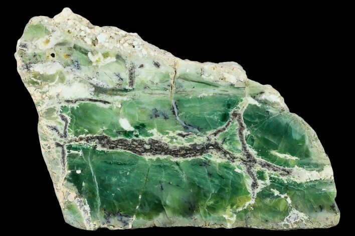 "5.3"" Polished Green-White Opal Slab - Western Australia"
