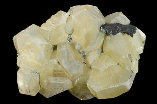Calcite - Fossils For Sale - #132774