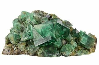 Fluorite & Galena - Fossils For Sale - #132981