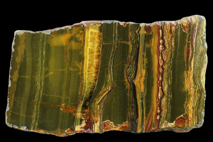 "7.9"" Marra Mamba Tiger's Eye Slab - Mt. Brockman (2.7 Billion Years)"