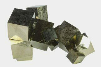 Pyrite - Fossils For Sale - #132552